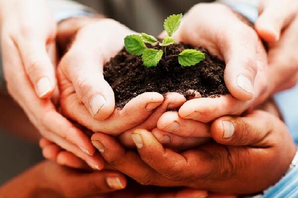 ¿Es posible incluir el impacto social en la lógica de negocios? Impact Sourcing en Colombia